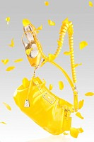 Yellow handbag and pumps