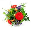 Blumen für dich / flowers for you