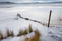 Frozen Loch at Little Dam, Eaglesham Moor, near Glasgow, Scotland