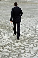 Rear view of man in suit walking down dry ground