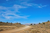 Dirt road in Karoo landscape near Willowmore, Eastern Cape Province, South Africa