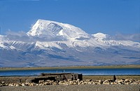 Mount Gurla Mandhata (7728 m), Barkha region, Tibet