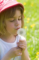 Portrait of girl 4_5 blowing dandelion, close up