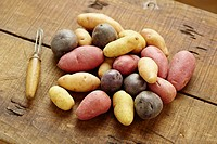 Variety of uncooked potatoes