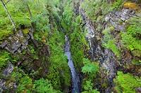 Corrieshalloch Gorge, Scotland
