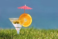 Photo of martini with orange slice and olives in green grass