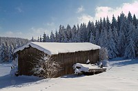 Snow-covered shed, Waldviertel, Lower Austria, Austria, Europe