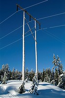 electric power lines at Hollyburn cross country ski area, Cypress Mountain, West Vancouver, BC, Canada