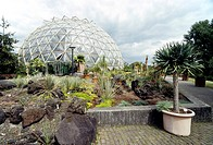 Glass dome greenhouse, botanical garden, Heinrich-Heine-Universitaet university in Duesseldorf, North Rhine-Westphalia, Germany, Europe