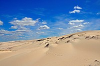 Sand dune, De Hoop Nature Reserve, South Africa, Africa