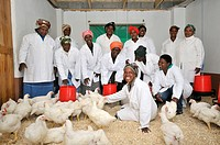 Poultry project of a women's group, group picture in the coop, Lady Frere, Eastern Cape, South Africa, Africa