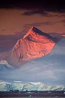 Alpenglow lights up high peaks on Wiencke and Anvers Islands behind Port Lockroy, Antarctic Peninsula