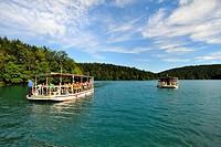 parco nazionale dei laghi di plitvice, nacionalni park plitvicka jezera, croazia