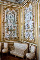 Castle of Chantilly _ The Grande Singerie or the Monkey Room _ Boudoir decorated by Christophe Huet's wall paintings representing monkeys