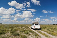 Africa, Botswana, Land vehicle passing through central kalahari game reserve
