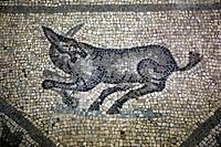 Floor mosaics 5th century, Basilica Santa Maria Assunta, Aquileia, Friuli-Venezia Giulia, Italy