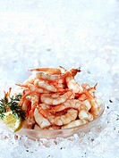Cooked prawns in a bowl on crushed ice