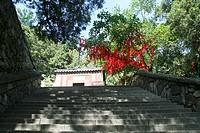 Temple. Mount Tai. China.