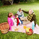 Family enjoying in a park