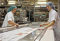 Fish processing. Workers packing crab sticks at a fish factory. Crab sticks are made from processed white fish flavoured to taste like crab, shaped in...