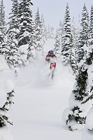 Young man skiing in deep powder.