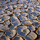 Dry cracked mud formations in desert