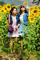 girls posing, sunflower fields of lopburi , central thailand