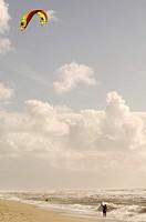 Kite on the beach of Sylt, Germany
