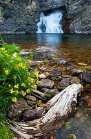 Running Eagle Falls with wildflowers in the foreground in Glacier Naional Park, Montana.
