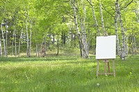 Easel in Woods