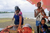 vente de poisson au retour de peche Ile de la Martinique Departement et Region d'Outremer francais Archipel des Antilles Caraibes//tuna-fish for sale ...