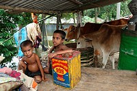 Children take shelter at temporary house due to flood in Sirajganj It is one of the worst flood affected districts in Bangladesh About 0 7 million peo...