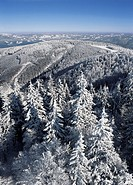 snow_covered mountains in the Black Forest in Germany