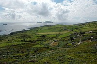 Republic of Ireland, Iveragh Peninsula, Deenish and Scarrif islands seen from Coomakesta Pass