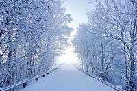 Karlslund winter way, Sweden