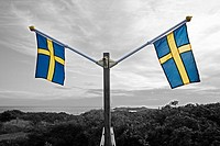 Two swedish flags in colour, against a scenery in black and white. Sweden.