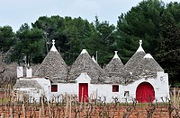 Locorotondo  Puglia  Italy  Trullo in the countryside between Locorotondo and Alberobello