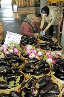Tennessee, Nashville, Nashville Farmers´ Market, agriculture, locally grown, produce, vegetables, fresh, eggplant, sustainability, Green Movement, Mus...