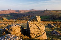 Houndtor and Haytor Rocks viewed from Hayne Down, Dartmoor National Park, Devon, England, United Kingdom, Europe