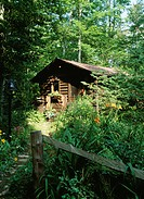 EXTERIORS: log cabin in the woods, wild overgrown, wooded area, fence, bell at stepping stone path