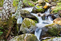 The Solana Toro stream in the Sierra de Gredos  Ávila  Castilla León  Spain