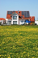 House with solar roof. View over a dandelion field.