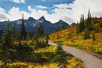 autumn colors and a trail in the tatoosh mountains in mt. rainier national park, washington, united states of america