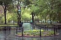 paths in a park area on a wet day, manhattan, new york city, new york, united states of america