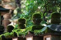 detail of kasuga grand shrine, nara, japan