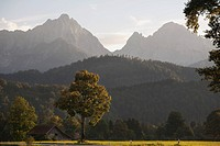a tree in a field with a barn, hills and mountains in the background at sunset, schwangau, germany