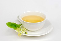 Cup, of, Large_leaved, Lime, blossom, tea, Tilia, platyphyllos,