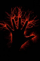 Lightning Hand