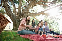 Family enjoying picnic in park (thumbnail)