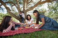 Family with thw girls 7-9, 10-12 posing during picnic in park (thumbnail)